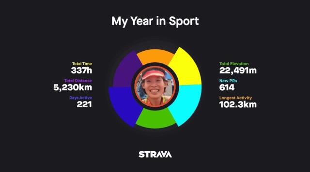 strava year in sport